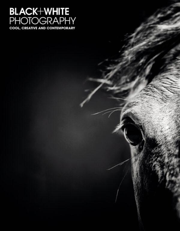 Black White photography 249