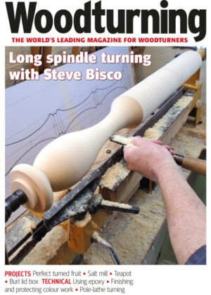 Woodturning magazine issue 355